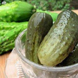 Sunshine Dill Pickles recipe