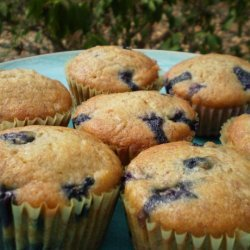Blueberry Banana Snack Cakes