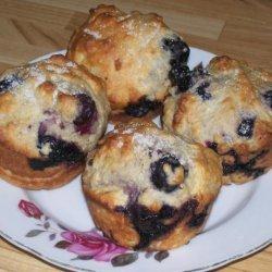 Fat-Free, Sugar-Free & Cholesterol-Free Blueberry Muffins!